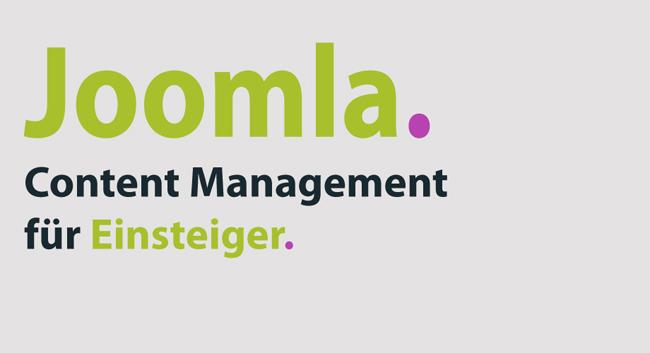 Joomla-Agentur im Saarland Rheinland-Pfalz und Baden-Württemberg. Realisation von Joomla-Projekten